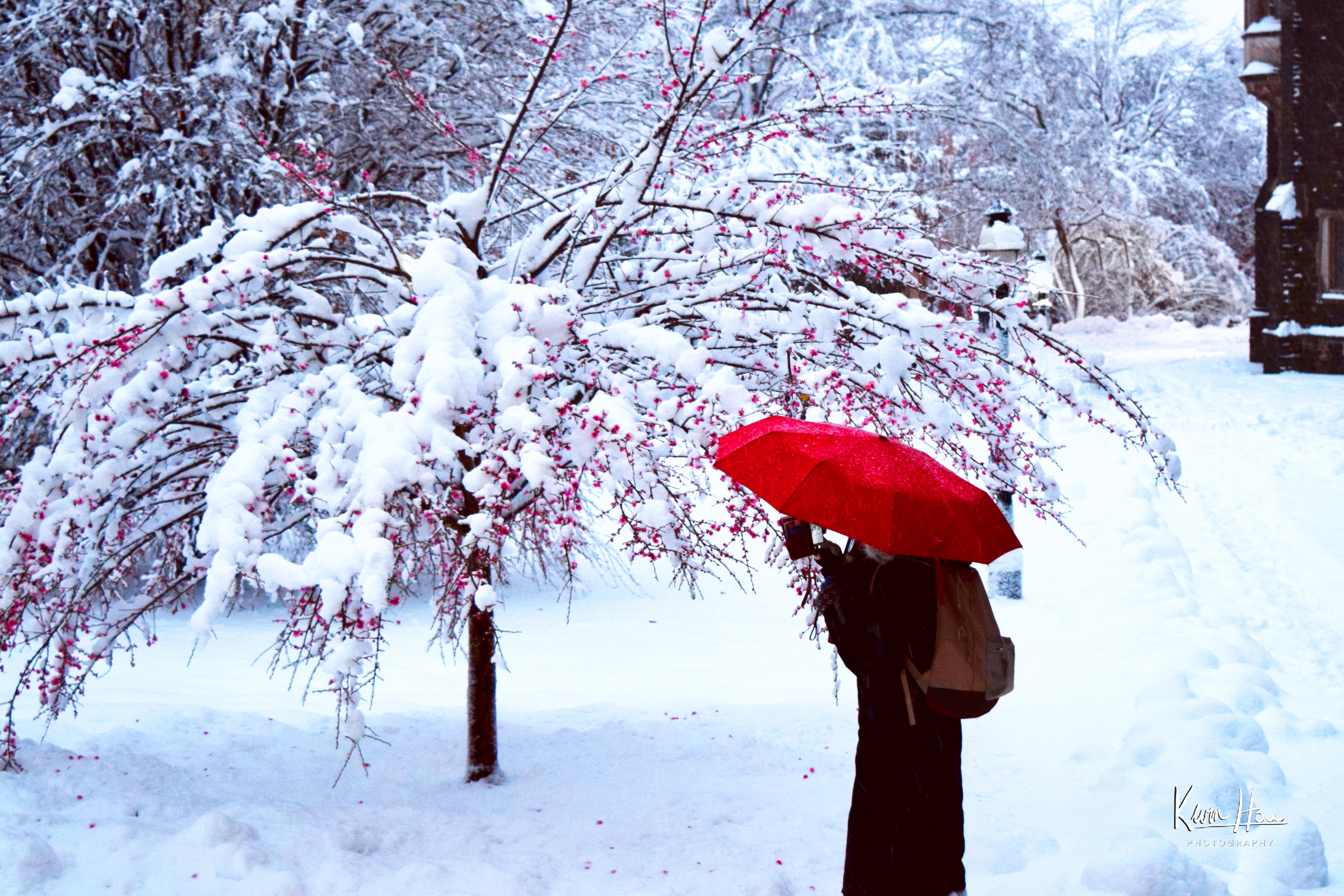 Woman with Red Umbrella in Snow